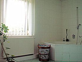 Badezimmer Ferienwohnung mit Pool in Dresden / Weixdorf
